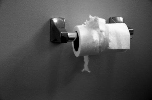 Toilet Paper Dags
