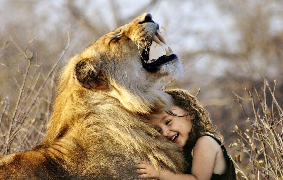 Child Hug Lion