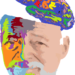 Old Man Brain